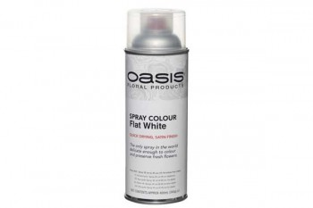 Oasis spray paint from GT Sundries