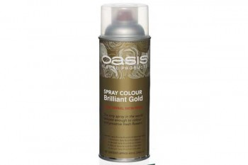 Oasis spray paint for fresh and artificial flowers from GT Sundries