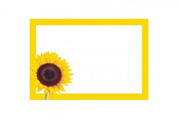 Buy florists cards from GT Sundries florist supplies at wholesale prices