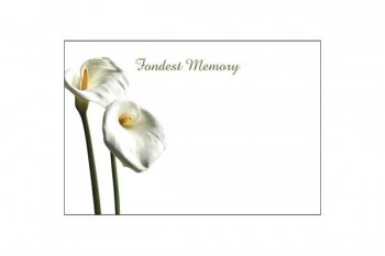 Buy flower cards and florist supplies at wholesale prices from GT Sundries
