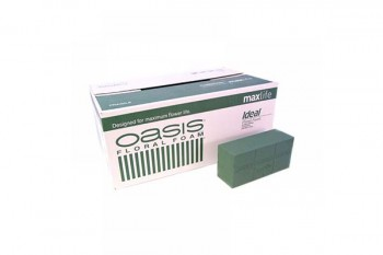 Oasis Ideal Max Life Brick box of 20 from GT Sundries