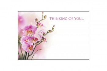 Buy florist cards from GT Sundries florist supplies at wholesale prices