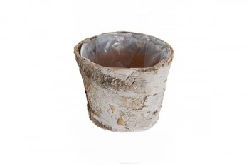Buy birch planters and florist supplies from GT Sundries
