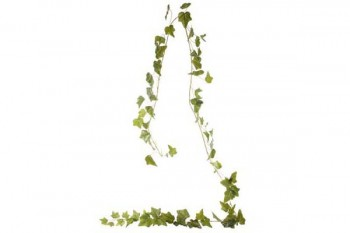ivy garland for decoration, weddings, events from GT Sundries florist supplies