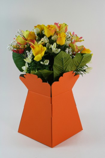 Living Vase Orange 30 Pack