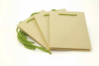 Hand Tied Bag x 10 Pieces Natural Kraft Size 190 x 185 x 250 mm