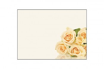 Cream Roses on a Cream Background Card