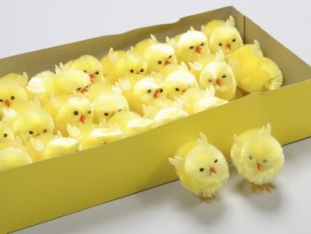 Easter yellow chickens for decoration and craft