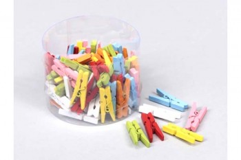 coloured wooden pegs for craft and floristry